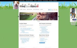 DogKneeInjury - Dog Surgery Home Page