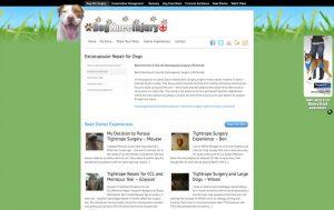 DogKneeInjury - Cruciate Surgery Page